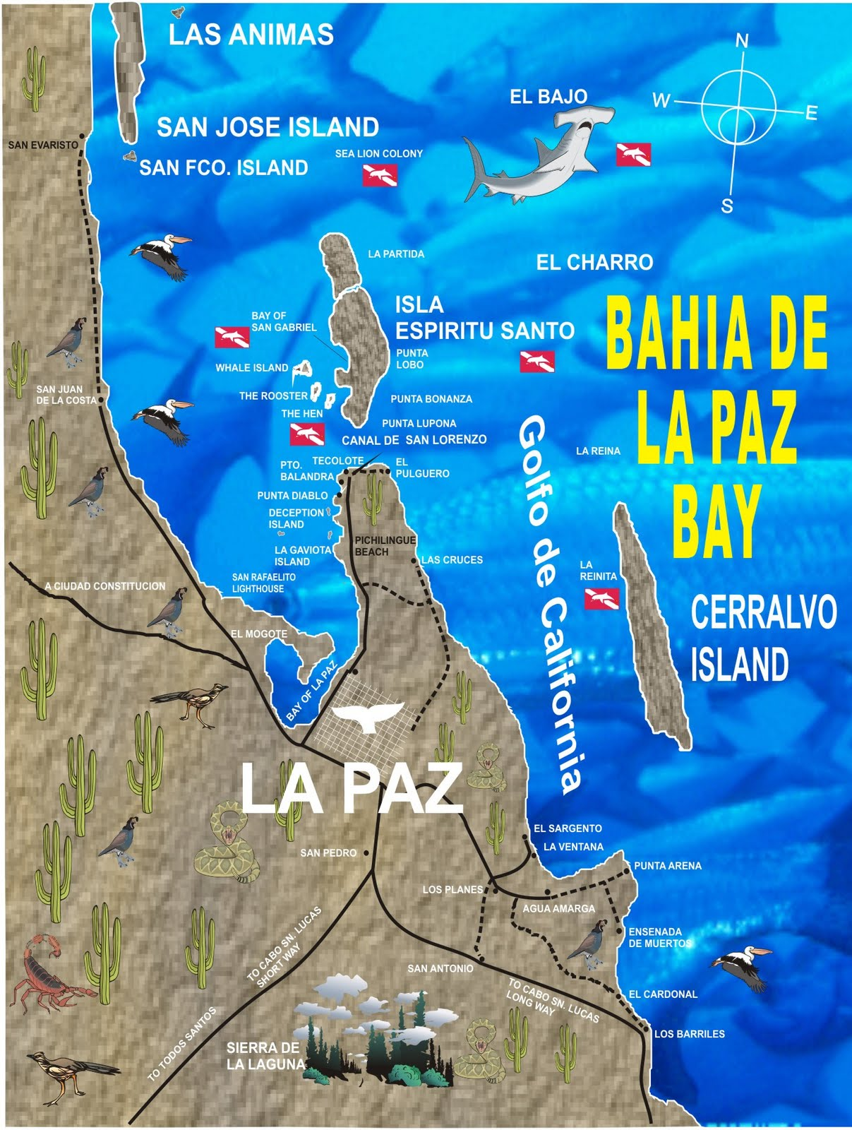 Baja California siti di incontri quanto accurate sta uscendo fossili