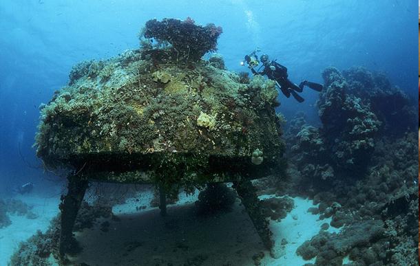 I piu famosi siti d 39 immersione in sudan aquadiving tours for Siti architetti famosi