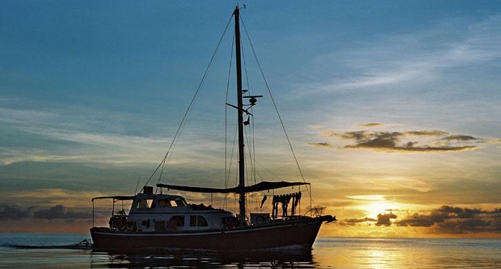 Ocean Hunter 1 Tramonto