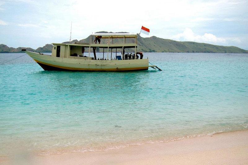 Barca Diving
