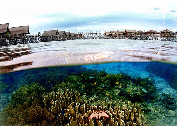 Kapali Island Resort