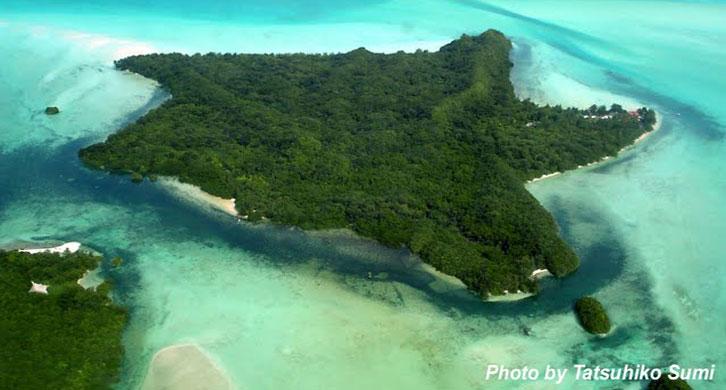 Carp Island
